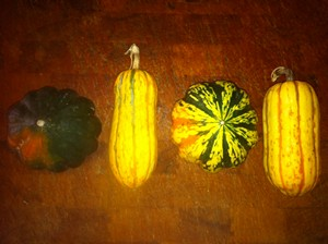 Accidental Locavore Winter Squash for Soup