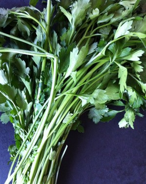Accidental Locavore Flat Leaf Parsley