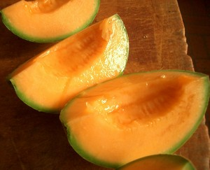 Accidental Locavore Cantalopes