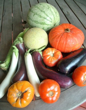 Accdiental Locavore Farm Box September
