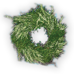 Accidental Locavore Stokes Wreath