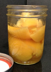 Accidental Locavore Preserved Lemons