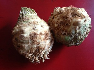 Accidental Locavore Celery Root