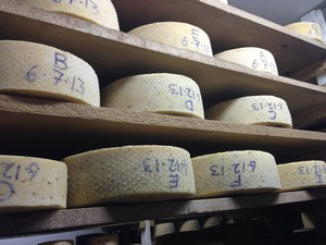 Accidental Locavore Cheese Aging