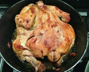 Accidental Locavore Chicken Lady Chicken