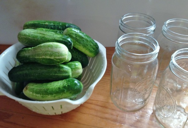 Accidental Locavore Pickling Cukes