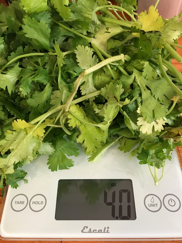 Accidental Locavore 4 Ounces Cilantro