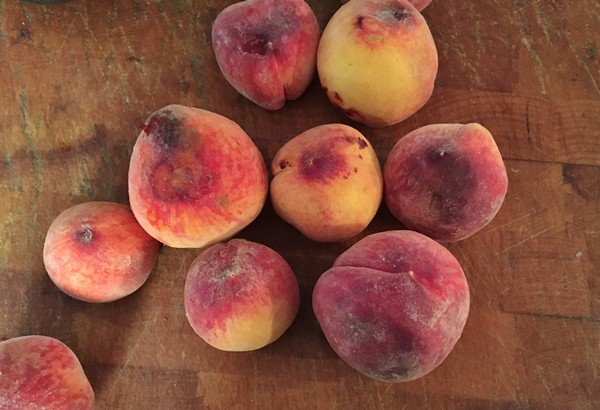 Accidental Locavore Peaches for Peelers