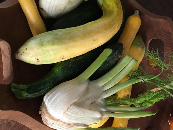 Accidental Locavore Summer Squash