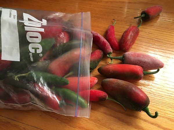 accidental-locavore-bag-o-chiles