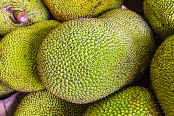 Accidental Locavore Food Trends Jackfruit