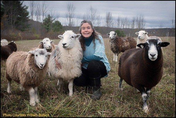 Accidental Locavore Lamb