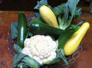 Accidental Locavore Zucchini and Summer Squash