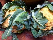 Accidental Locavore Orange Cauliflower