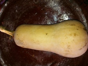 Accidental Locavore Butternut Squash