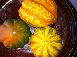 Accidental Locavore Carnival Squash
