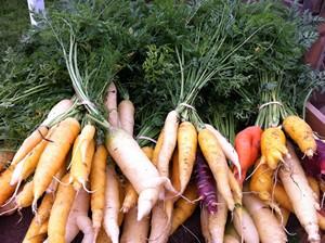 Accidental Locavore Carrots