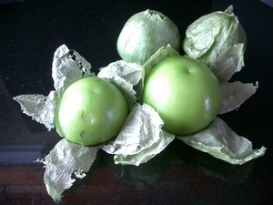 Accidental Locavore Tomatillos - Copy