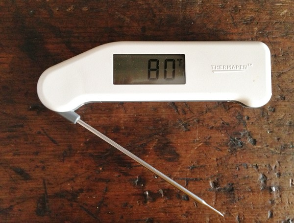 Accidental Locavore Thermometer for a Roast