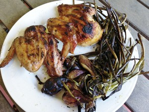 Accidental Locavore Grilled Chicken and Onions