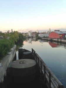 Accidental Locavore Sunset in Gowanus