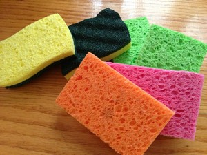 Accidental Locavore Sponges