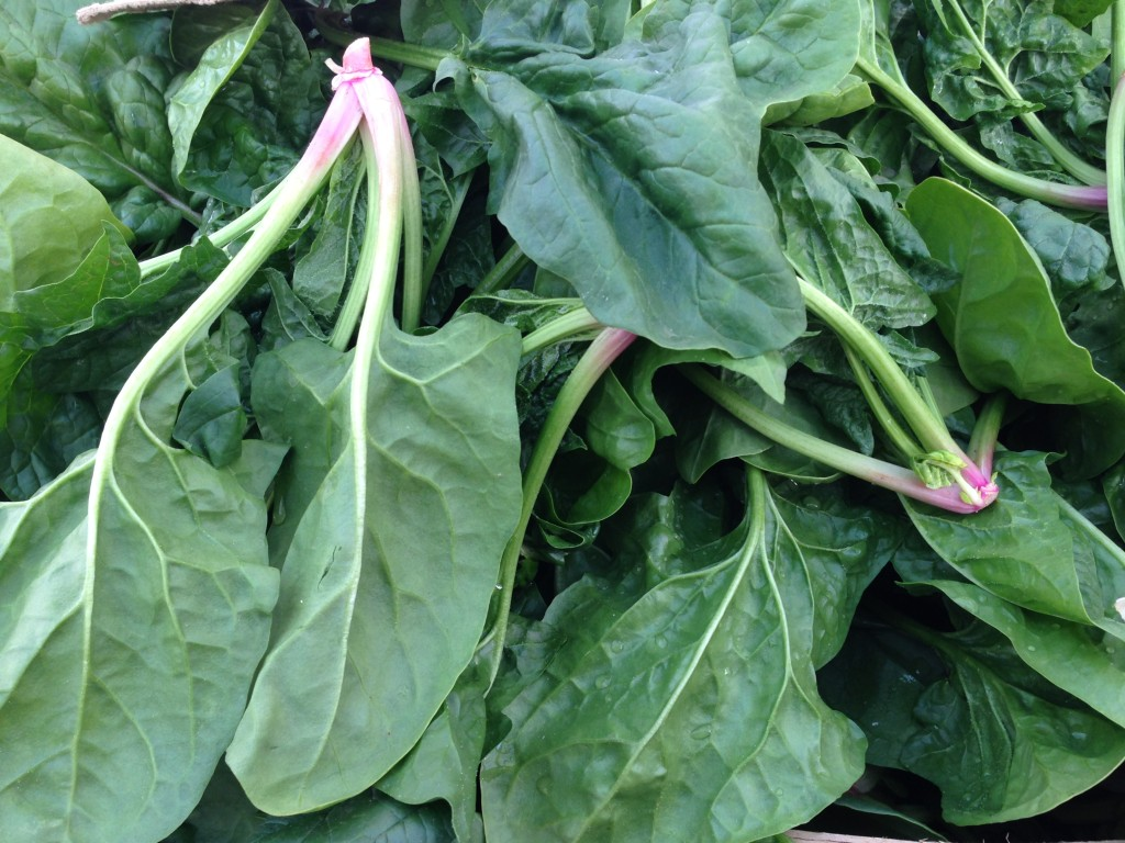Accidental Locavore Croatian Spinach