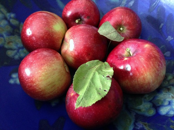 Accidental Locavore Red Hook Apples