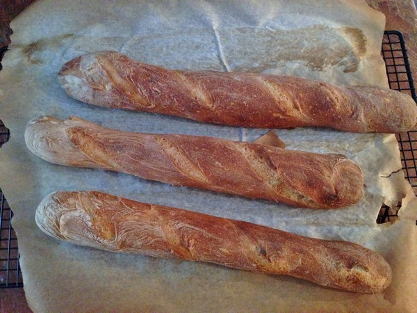 Accidental Locavore My Baguettes
