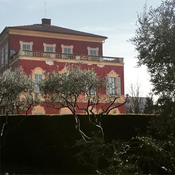 Accidental Locavore Matisse Museum