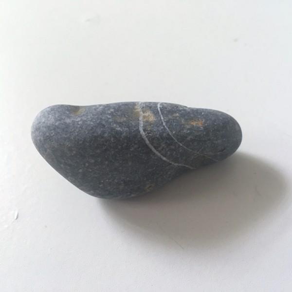 Accidental Locavore My Nice Pebble