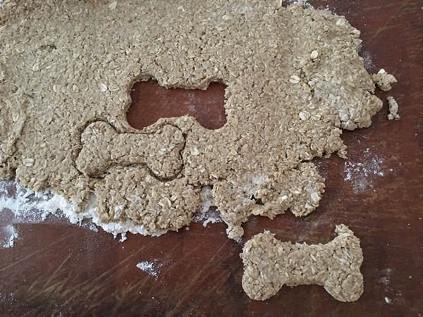 Accidental Locavore Cutting Dog Biscuits