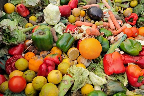 Accidental Locavore Food Waste