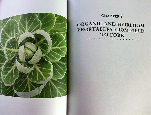 Accidental Locavore Page from Non-GMO Cookbook