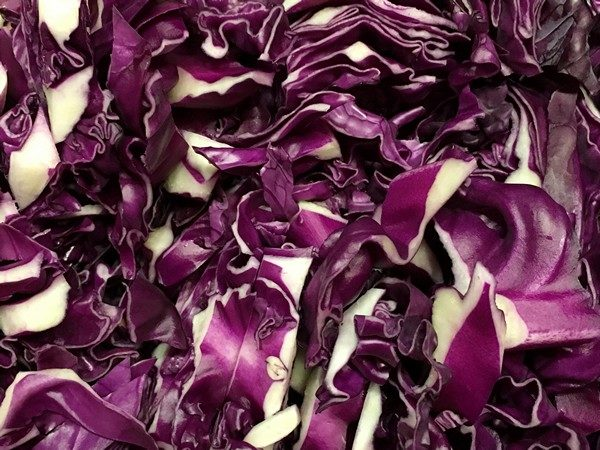 Accidental Locavore Red Cabbage Sliced
